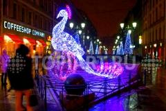 """Новогоднее световое оформление улиц - Светящаяся фигура """"Жар Птица"""""""