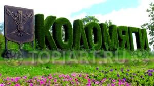 Зеленая надпись из искусственного газона МО КОЛОМЯГИ