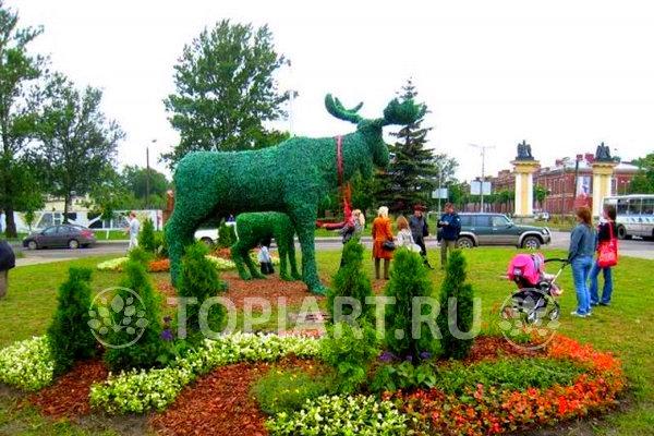 """Зеленые фигуры """"Лось"""" и """"Лосенок"""" в г. Гатчина"""