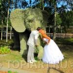 """Топиарная фигура из мха """"Слон"""""""
