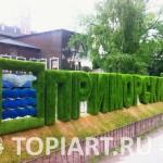 Надпись из искусственного газона