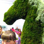 Topiary and moss