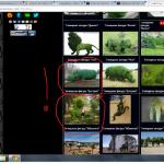Воровство контента с сайта www.topiart.ru, также украдены фото тигра - художники из Украины, бегемот англичанина Стивена Маннинга