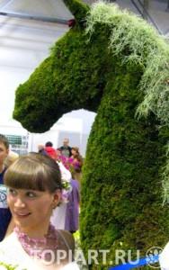 Topiary-horse-www.topiart.ru