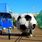 Топиарный футбольный мяч