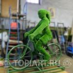 """Топиарная фигура """"Велосипедистка"""""""