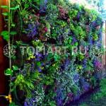 """Конструкция вертикального озеленения """"Зеленая стена"""""""