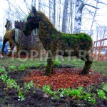 topiary frame