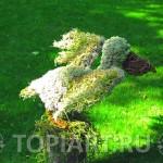Топиарные фигурки для сада