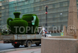 delyvery-of-topiary-in-Russia