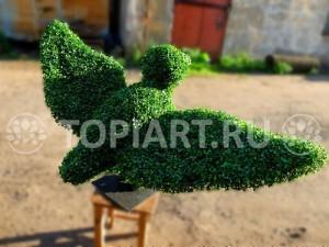topiary-gus-www.topiart.ru