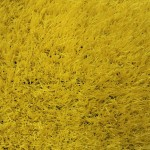 Газон желтый